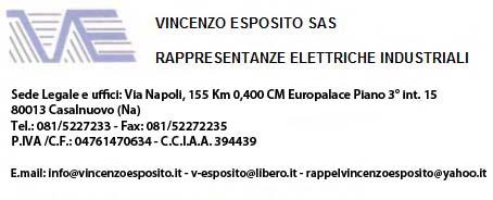 Logo Vincenzo Esposito 3